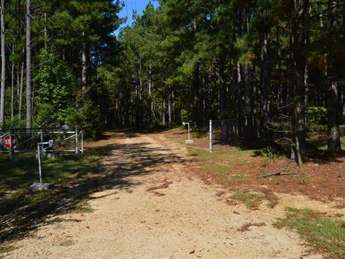 888 Acre Show Place For Sale on th : Osyka : Pike County : Mississippi