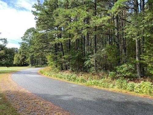 Nice Subdivision to Build New Home : Bee Branch : Van Buren County : Arkansas