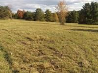 Prime Hunting & Camping Land : Lockwood : Chemung County : New York