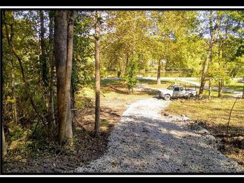 Riverfront Woods : Mc Connelsville : Morgan County : Ohio