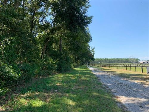 Vacant Land, Bell, Gilchrist : Bell : Gilchrist County : Florida