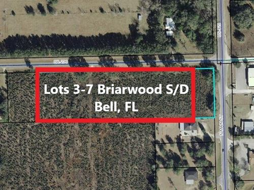 Lots Bell Gilchrist County Florida : Bell : Gilchrist County : Florida