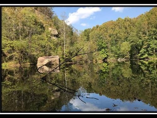 The Woods At Lagrange : Ironton : Lawrence County : Ohio
