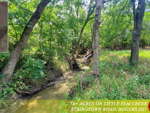 78 Acres, Little Elm Creek : Temple : Bell County : Texas