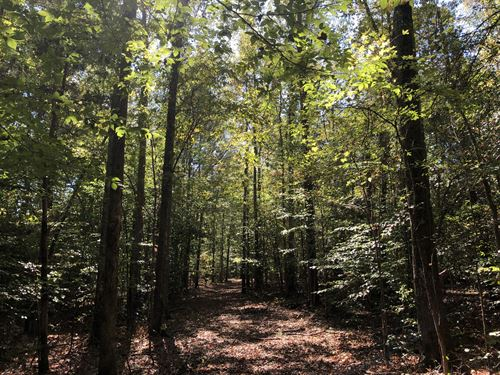Fountain Inn Homesite & Rec Land : Fountain Inn : Greenville County : South Carolina