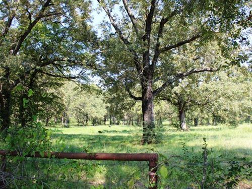 Oklahoma Beauty Rolling Ranch Land : Idabel : McCurtain County : Oklahoma