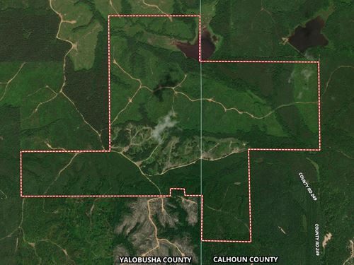 Dog Creek 686.42 : Bruce : Yalobusha County : Mississippi