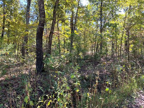 Land For Sale in Fulton County, Ar : Hardy : Fulton County : Arkansas