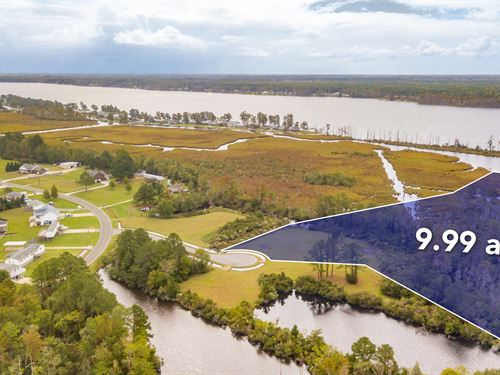 Spacious An Serene, This 9.99 Acre : Chocowinity : Beaufort County : North Carolina
