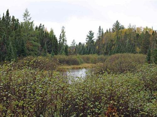 Lukes Rd, Moose Trails 1118217 : Amasa : Iron County : Michigan