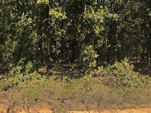 Hunting Land For Sale in Salem, Ar : Salem : Fulton County : Arkansas