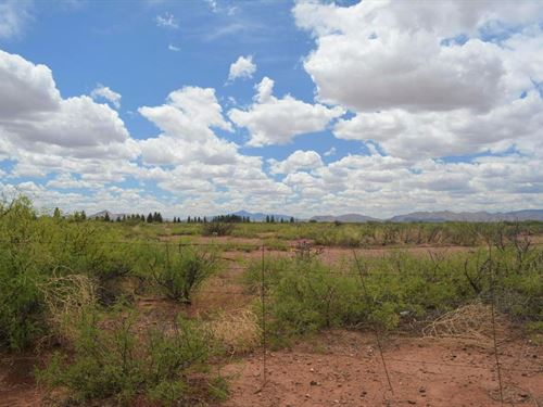 Prime Land, Paved, Power, $330 P/Mo : Douglas : Cochise County : Arizona