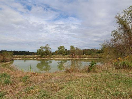 Big Canoe Creek Farm & Hunting Land : Ashville : Saint Clair County : Alabama