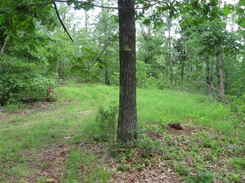 Land For Sale in The Ozarks : Yellville : Marion County : Arkansas