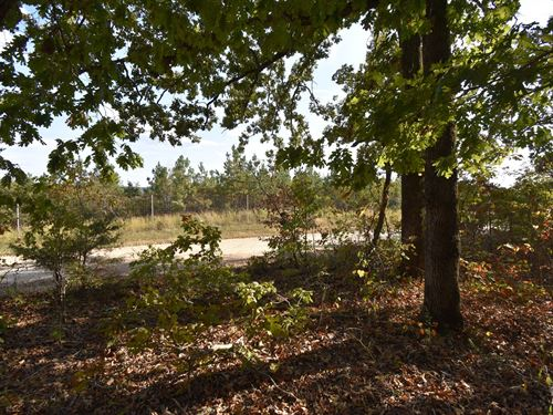19.27 Acres of Land For Sale : Waverly : Humphreys County : Tennessee