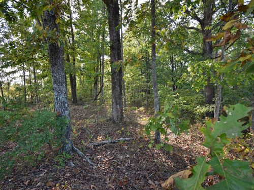16.68 Acres Vacant Land Tennessee : Waverly : Humphreys County : Tennessee