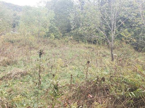 4.99 Acres Hobby Farm Hunting : Tazewell : Virginia