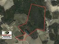149 Acres of Farm And Timber Land : Cerro Gordo : Columbus County : North Carolina
