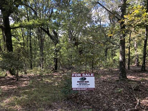 11.5 Acres in Osceola, MO : Osceola : Saint Clair County : Missouri