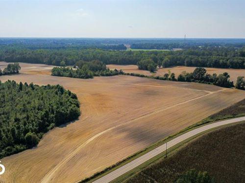 Arthur Davis Road Farmland & Huntin : Fremont : Wayne County : North Carolina