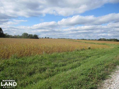 Knox County Farm : Baring : Knox County : Missouri