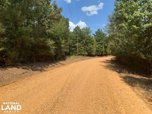 Hunting And Recreational Timberland : Kosciusko : Attala County : Mississippi