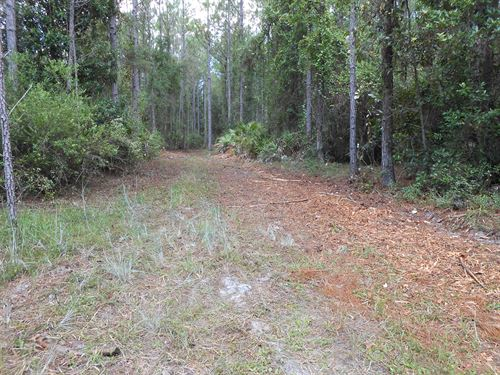 174 +/- Acres Development, Rec : Pierson : Volusia County : Florida