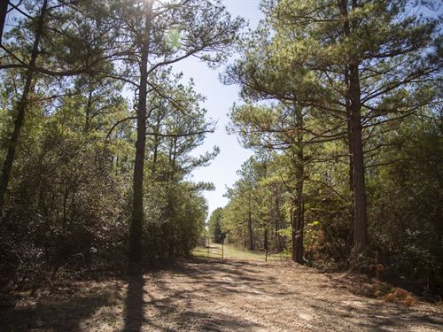 410 Acres Cr 3585 Tract 8 : Trinity : Houston County : Texas