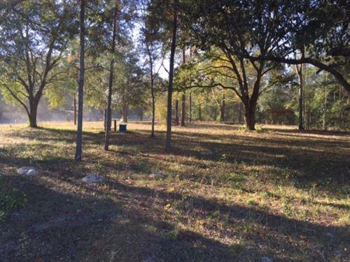 Corner Lot Near Suwannee River : O'brien : Suwannee County : Florida