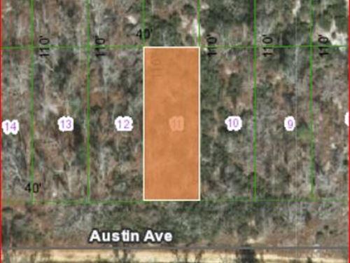 .1 Acres in Putnam County, Fl : Interlachen : Putnam County : Florida