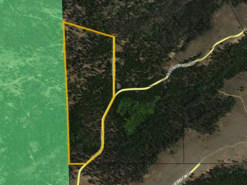National Forest Lot 2 : Atlantic City : Fremont County : Wyoming