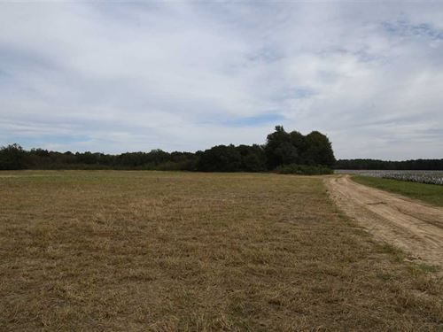 80 Acre Recreational Farm in Monro : Holly Grove : Monroe County : Arkansas