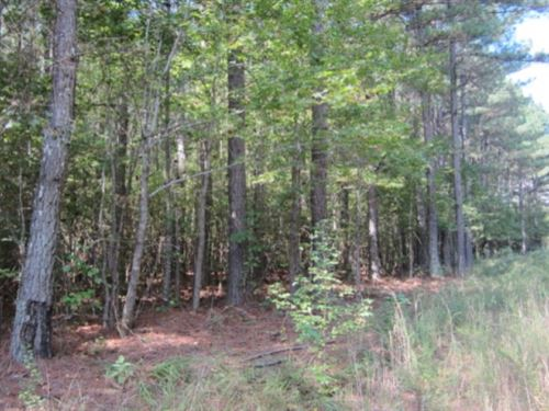 50.61 Acres In Tishomingo County : Iuka : Tishomingo County : Mississippi