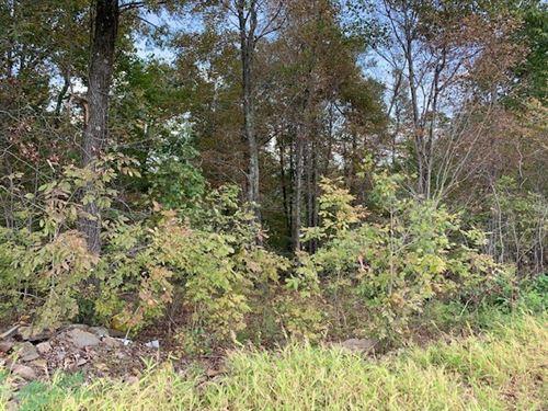 Hunting Land For Sale : Clinton : Van Buren County : Arkansas