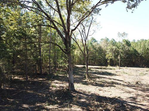 East Texas Rural Home Site / Land : Hughes Springs : Cass County : Texas