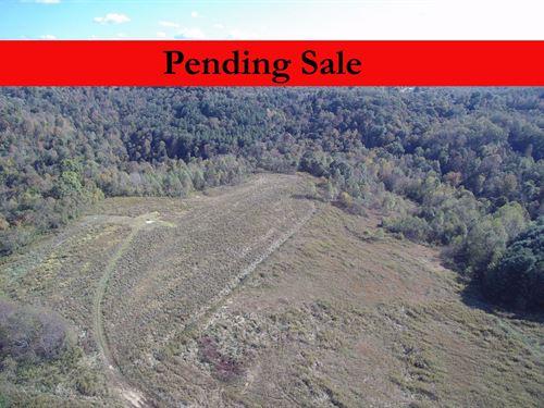 125 Acres Monroe County Absolute : Woodsfield : Monroe County : Ohio
