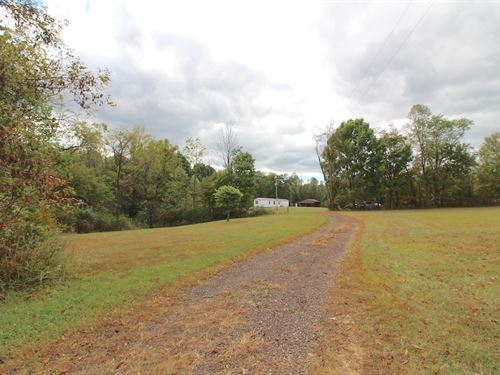 Euga Rd, 10 Acres : Newcomerstown : Guernsey County : Ohio