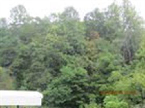 31.9 Acre Recreational Tract : Lexington : Rockbridge County : Virginia