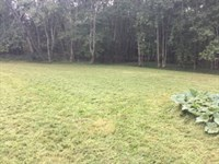 Lot in Gated Subdivision 119951 : Linden : Perry County : Tennessee