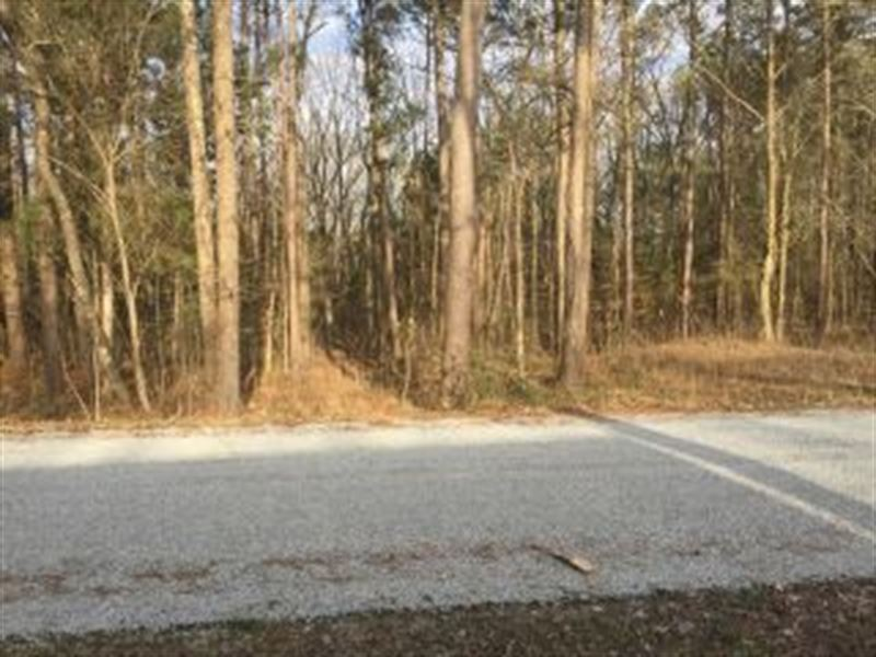 Lake View Lot 120106 : Big Sandy : Benton County : Tennessee