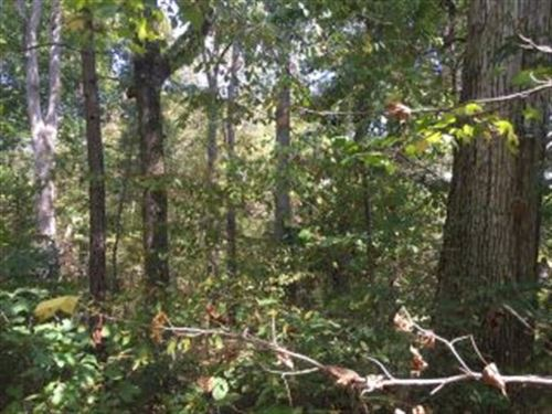 Lot With Mature Timber 121070 : Big Sandy : Benton County : Tennessee