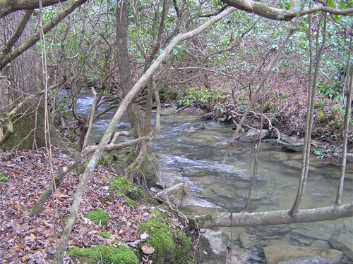 Creek, Woods, 2 Springs, Frontage : Dunlap : Sequatchie County : Tennessee