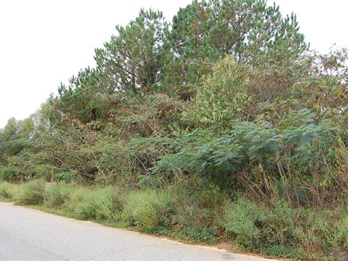 .73 Acre Lot in Dalzell : Dalzell : Sumter County : South Carolina