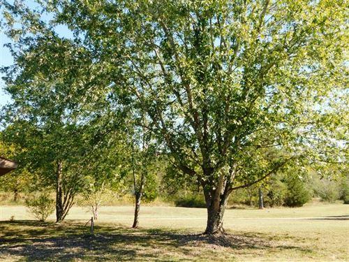 Home on 3 Acres For Sale in Willia : Williamsville : Wayne County : Missouri
