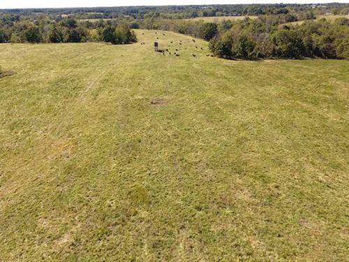 Carlin Ridge 366 : Rocky Comfort : McDonald County : Missouri
