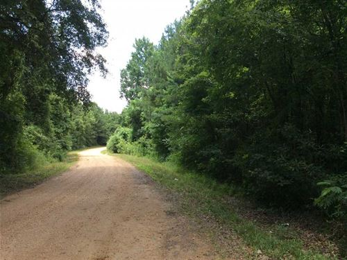 Bass Road Tract of Caldwell Parish : Kelly : Caldwell Parish : Louisiana