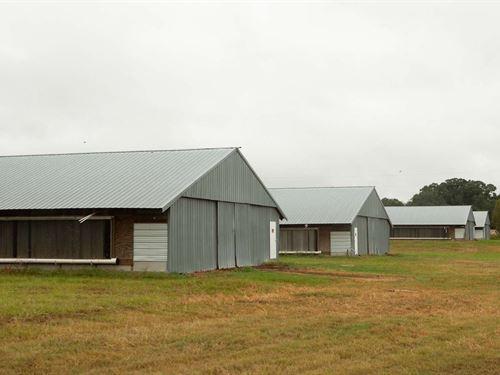 Broiler Farm 4 X 40 X 500 Poultry : Live Oak : Suwannee County : Florida