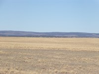 Farm & Ranch Land Estancia NM Water : Estancia : Torrance County : New Mexico