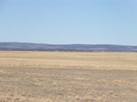 Farm & Ranch Land Estancia NM Water : Estancia : Torrance County : New Mexico