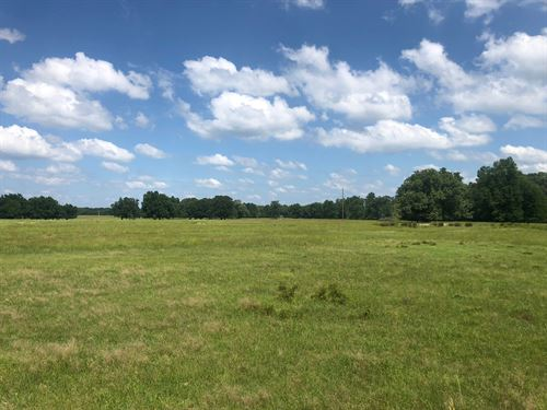 220 Ac Pasture Bagwell, Tx : Bagwell : Red River County : Texas